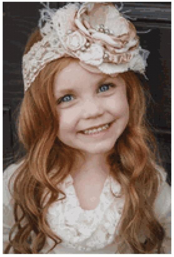 Transform your photo into cross stitch pattern