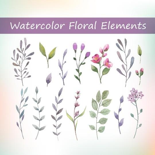16 Watercolor floral elements