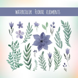 Watercolor floral elements set, floral invitation elements, flower clip art