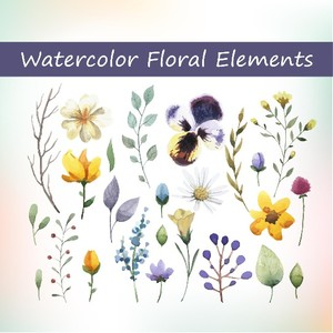 25 Watercolor floral elements