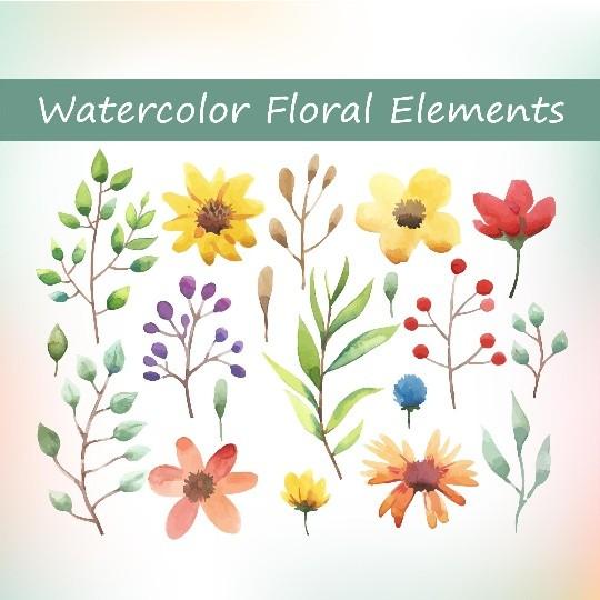 Watercolor floral elements set 2