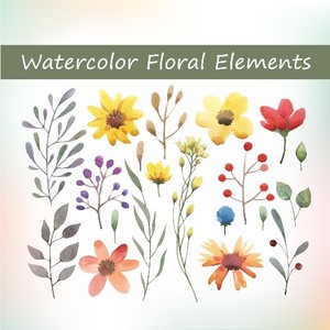 20 watercolor floral elements