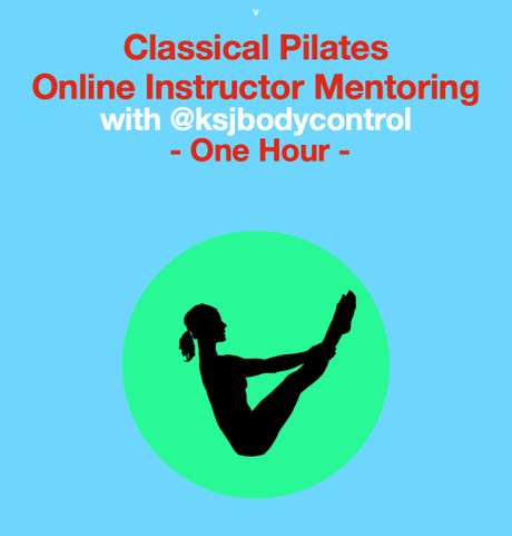 Online INSTRUCTOR MENTORING Session ( 1 hour)