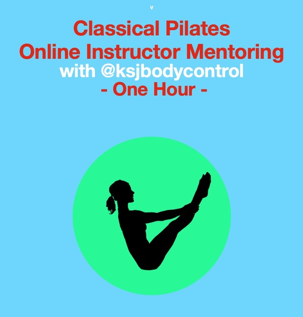 Online INSTRUCTOR MENTORING Session ( 1 hour) (Course of 6 available with one Session FREE)