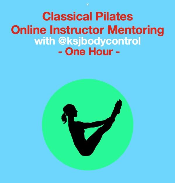 Online INSTRUCTOR MENTORING Session ( 1 hour)