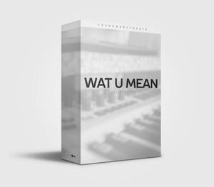 Young Mercy Beatz Wat U Mean Drum Kit