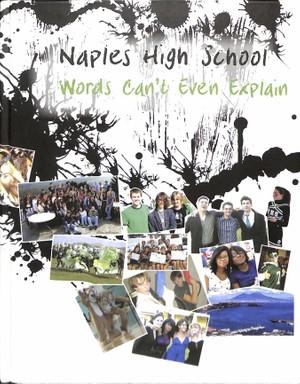 2008 Naples High School Log