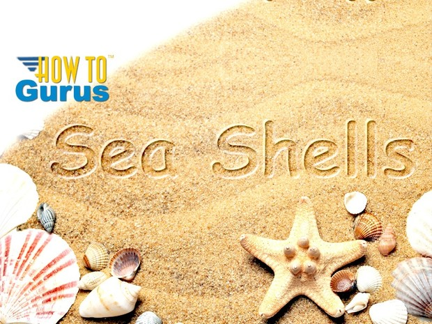 How to Put Text into a Sandy Beach in Adobe Photoshop Elements 11 12 13 14 15 Tutorial