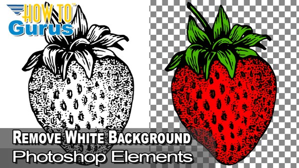 Remove a White Background with Photoshop Elements - Remove White Background Clipart