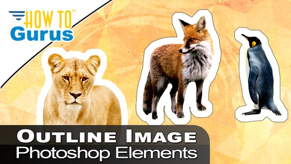 How To Outline or Cut Out an Image or Shape Photoshop Elements Scrapbooking 2018 15 14 13 Tutorial