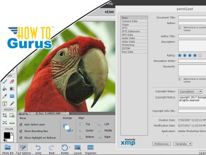 Photoshop Elements Edit Metadata : How to Edit File Info in 15 14 13 12 11 Tutorial