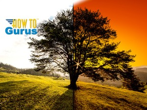 How To Change the Sky Background Behind a Tree Photo Manipulation in Photoshop Elements 14 13 12 11