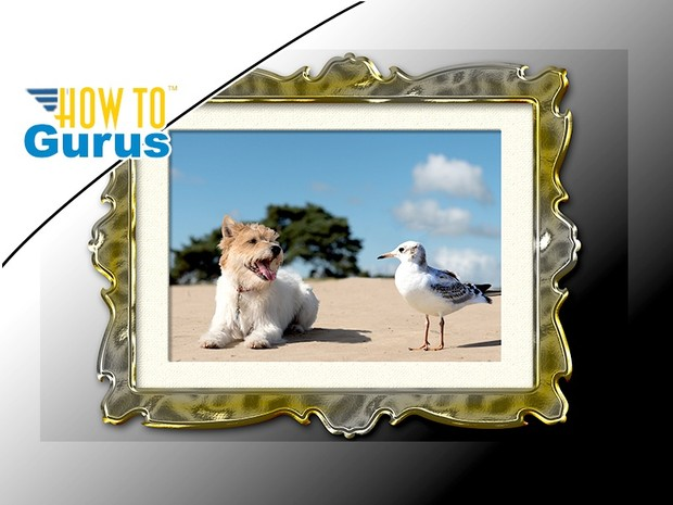 Photoshop Elements Add Border and Frame to Photo : Bor