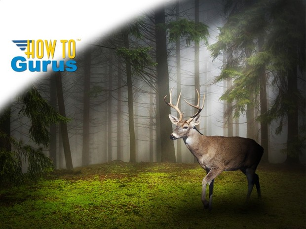 How to do Light Rays and Photo Manipulation in Photoshop Elements 14 13 12 11 Tutorial
