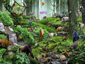 Communicate With Animals-Nature MP3