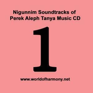 CD01 Niggunim soundtracks