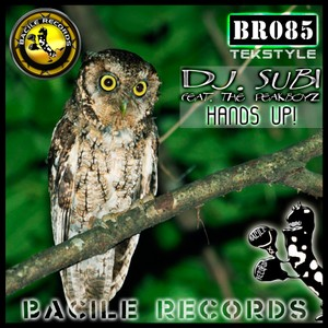 (Track) BR 085 Dj. Subi feat. The Peakboyz - Hands Up!