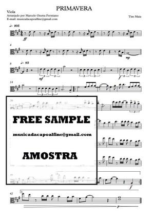 Primavera - Tim Maia Viola - Partitura.pdf