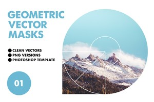 Geometric Vector Masks