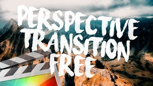 Free Perspective Transition