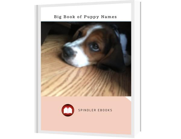 Big Book of Puppy Names