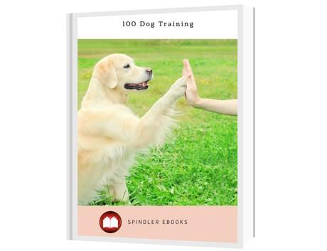 100 Dog Training