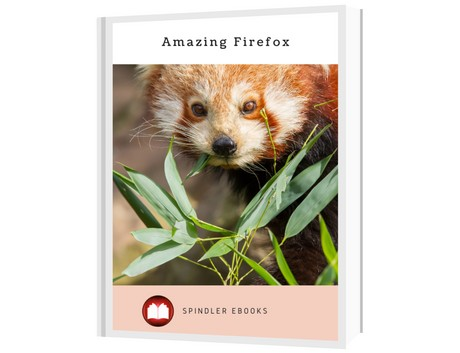 Amazing Firefox