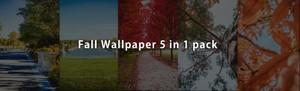 Fall 5 in 1 phone wallpaper