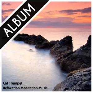 Relaxation Meditation Music (album) #1
