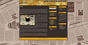 Template WordPress Giornale