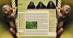 Template WordPress Scimmie