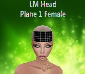 Head Plane 1 Female Mesh Catty Only!!!!