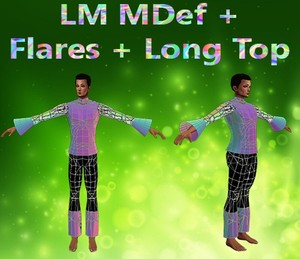 Default Body & Flares & Long Top Male Mesh Catty Only!!!