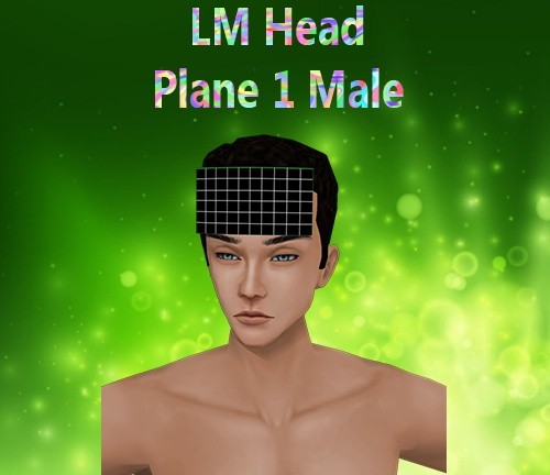 Head Plane 1 Male Mesh Catty Only!!!