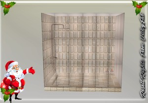 Bathroom Shower Mesh Catty Only!!!!