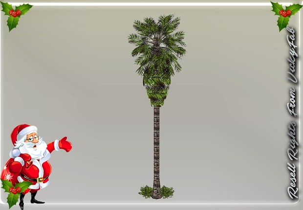 Palm Tree Mesh Catty Only!!!