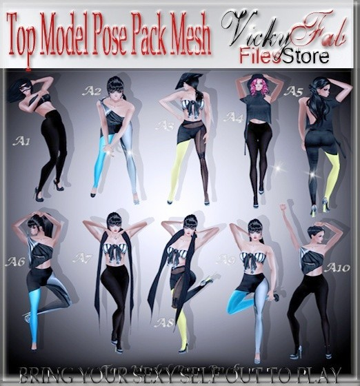 Top Model Pose Pack Mesh