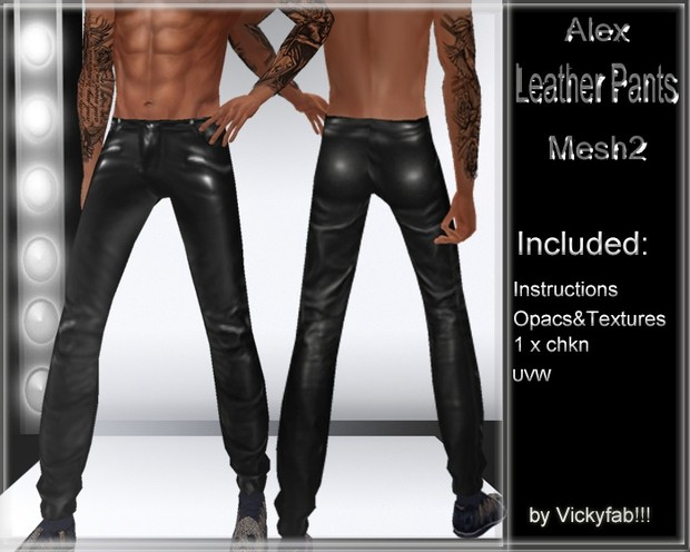 Alex Leather Pants Mesh2