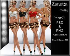 Zanetta Outfit