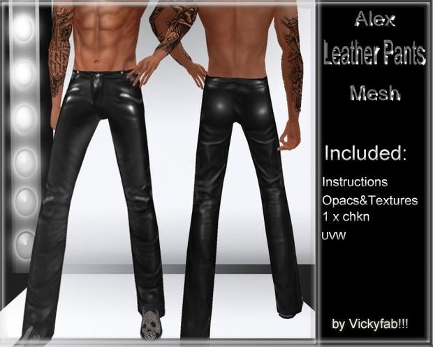 Alex Leather Pants Mesh1