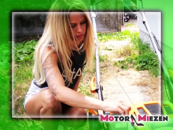 Motormiezen Episode 29