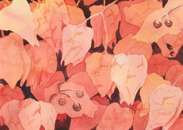 """""""Lantern Berries"""" Watercolor Original"""