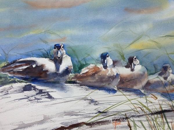 """""""Sitting Ducks"""" Watercolor Painting Original"""