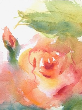 """""""Coral Roses"""" Watercolor Original Framed"""