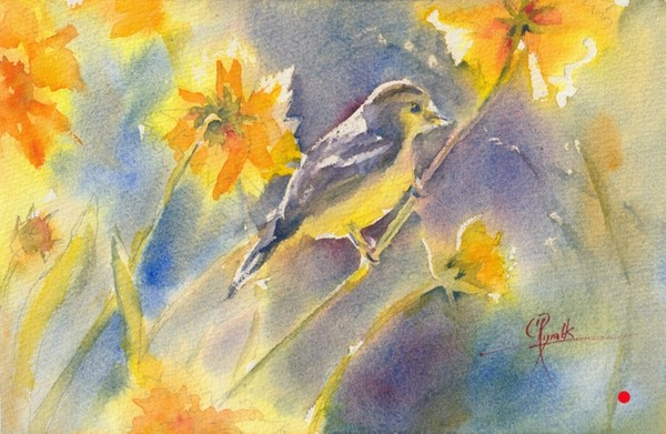 """Backlit Goldfinch"" Watercolor Print"