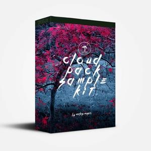Pro Cloud Rap SAMPLES VOL 1 [by Midas Muzik].