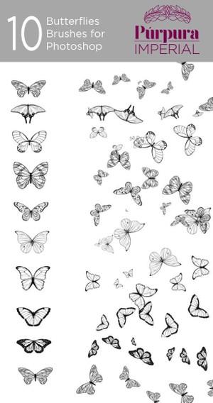 Butterflies Brushes