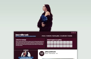Wordpress Premade #3 - Buy Me Diamonds