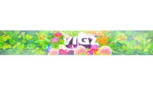vigz banner psd
