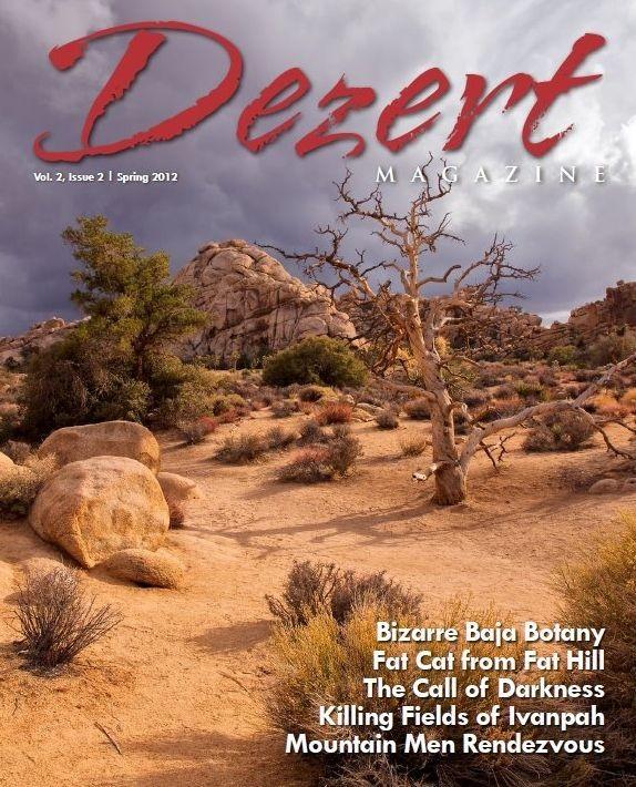 Dezert magazine Spring 2012